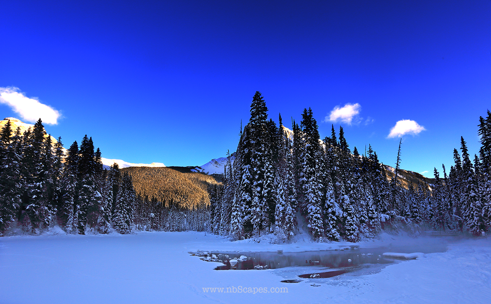 Banff National Park in Winter